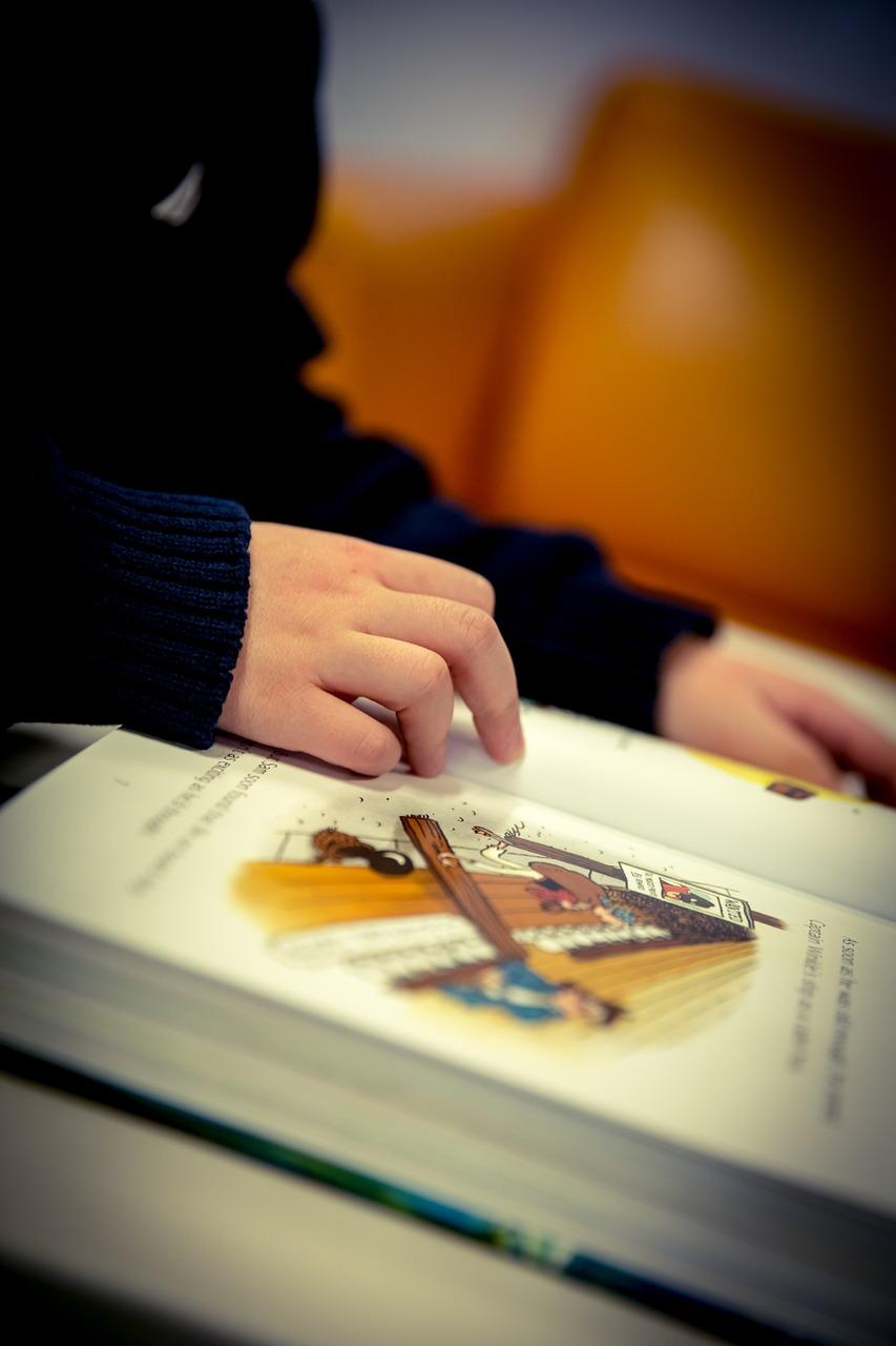 reading-1090736_1280